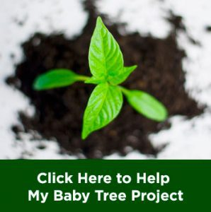 My Baby Tree Project WWF Indonesia