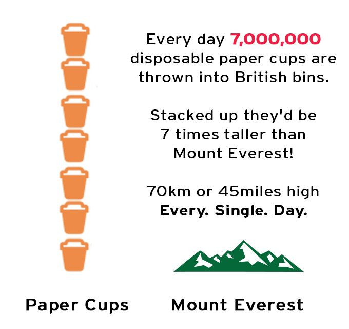 disposable coffee cups everest