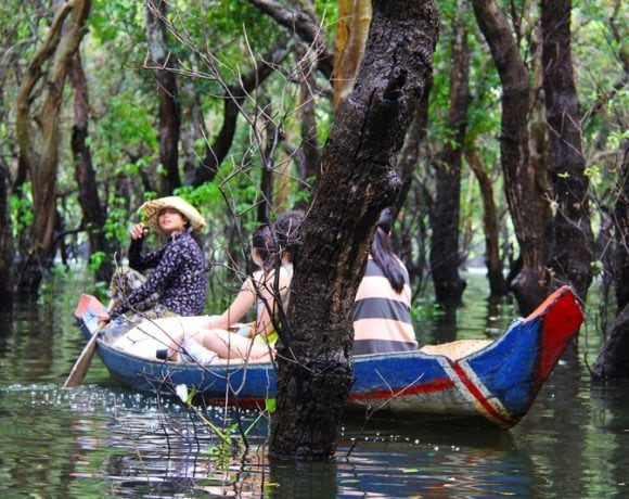 canoeing in the mangrove forest