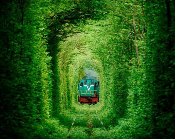Tunnel-of-Love-Ukraine (Wikimedia Commons)