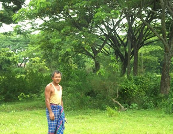 jadav payeng and his forest (Aljazeera)