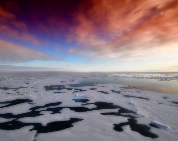 Just Like California, Arctic Is Burning Too Because Of Climate Change