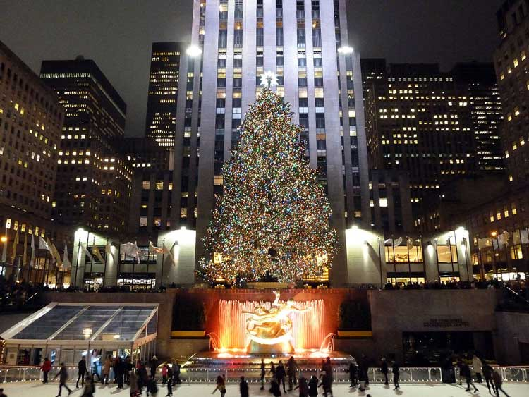 Rockefeller Center Christmas Tree is Recycled for More Happiness