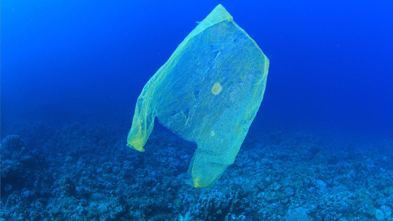 plastic bag in water by MichaelisScientists Wikimedia