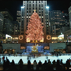 The Christmas tree lit at night.