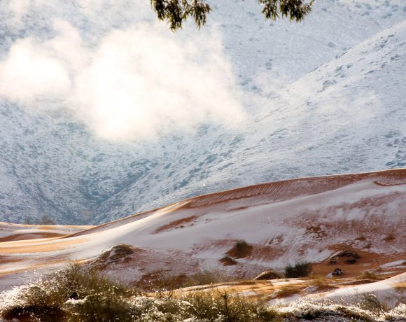 Ain sefra snow (Karim Bouchetata-Geoff Robinson , NPR)