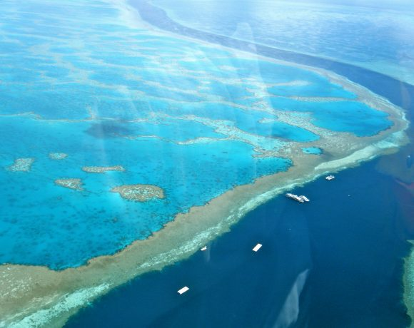 Amazing_Great_Barrier_Reef (Wikimedia Commons)