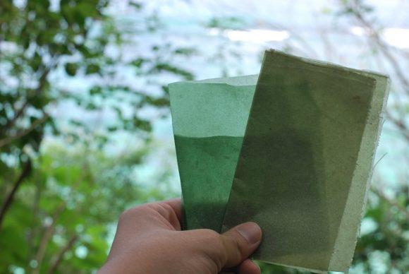 Seaweed based packaging (Evoware)