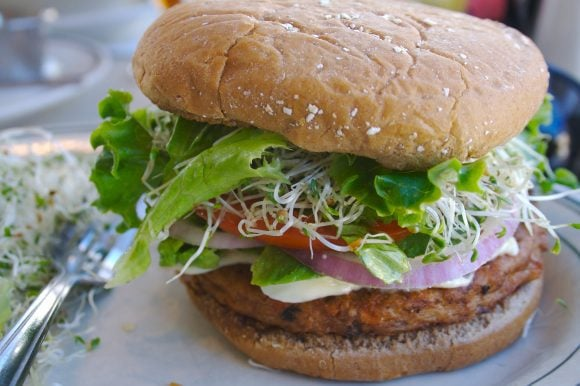 delicious veggie burger (Wikimedia Commons)