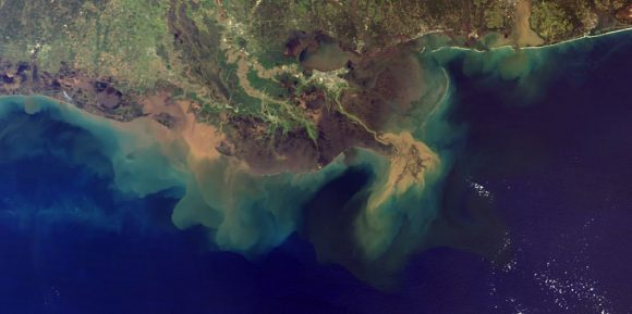 eutrophication (NOAA)