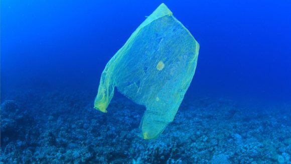 plastic bag in the ocean (Wikimedia Commons)