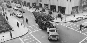 A tree is on its way to the Rockefeller Center