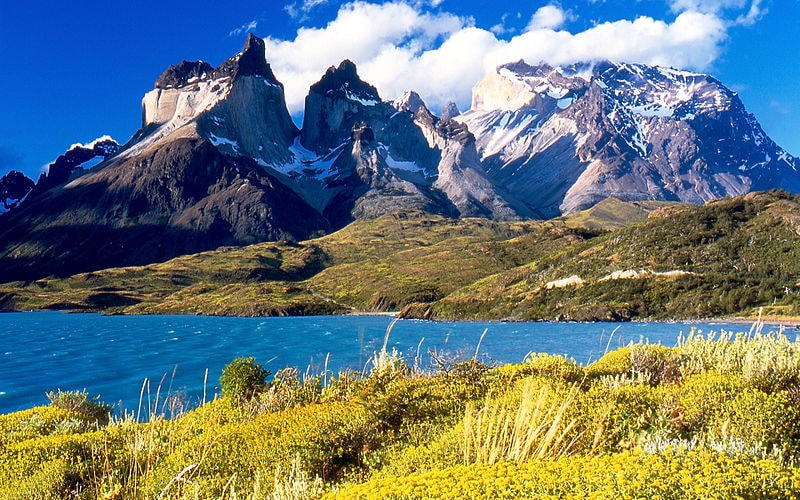 Chile Is Joining The Conservation With 10 Million Acres Donation