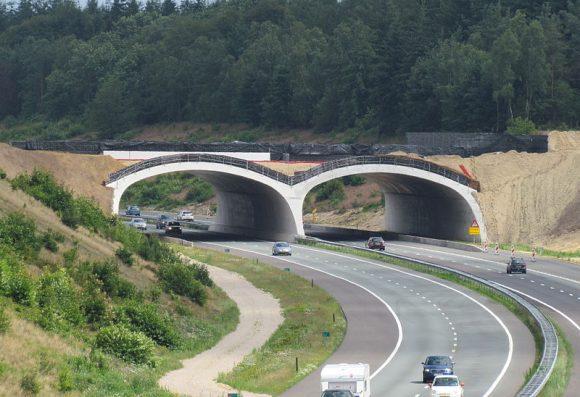Ecoduct_Hoog_Buurlo_in_aanbouw_(Wikimedia Commons)