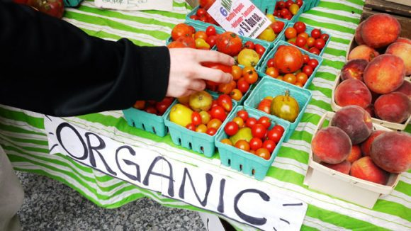 Organic_Produce (Wikimedia Commons)