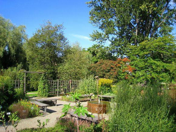 Oslo_Botanical_Garden (Wikimedia Commons)
