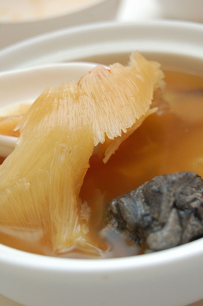 Traditional Food That Needs to Stop: Shark Fin Soup