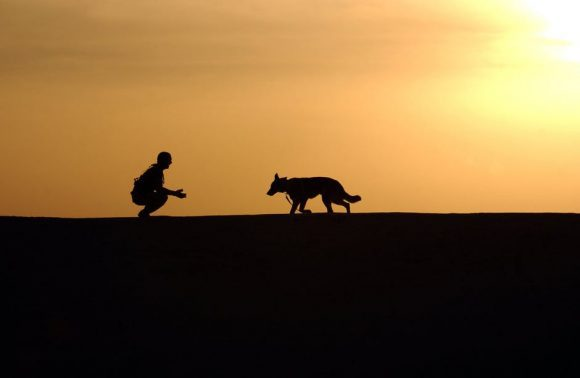 dog-trainer-silhouettes-sunset