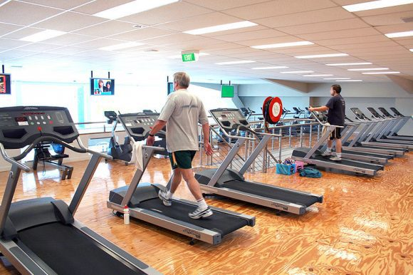 800px-Gym_Cardio_Area (Wikimedia Commons)
