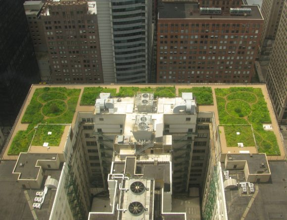 Chicago_City_Hall_green_roof (Wikimedia Commons)