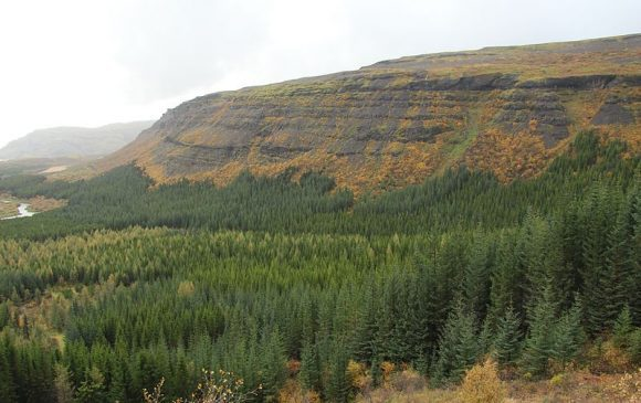 Thjorsardalur_National_Forest_Iceland (Wikimedia Commons)