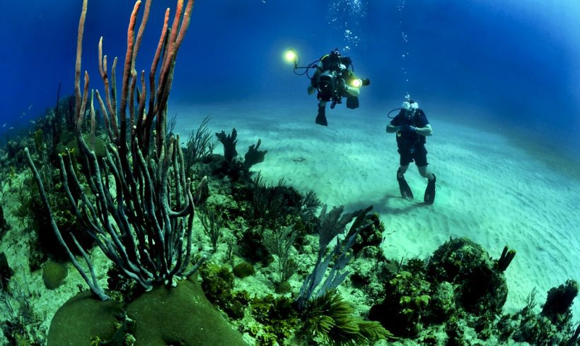 10 Underwater Wonders That You Should Dive in and Savor