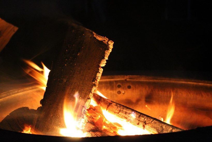 What If Burning Woods Releases More CO2 Than Fossil Fuel?