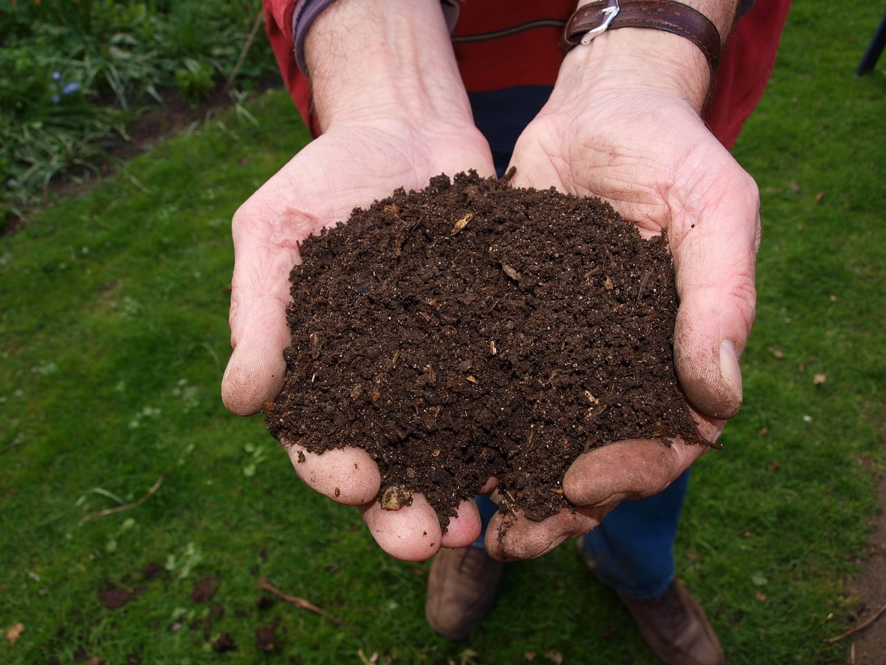 composting is a great way to reduce waste