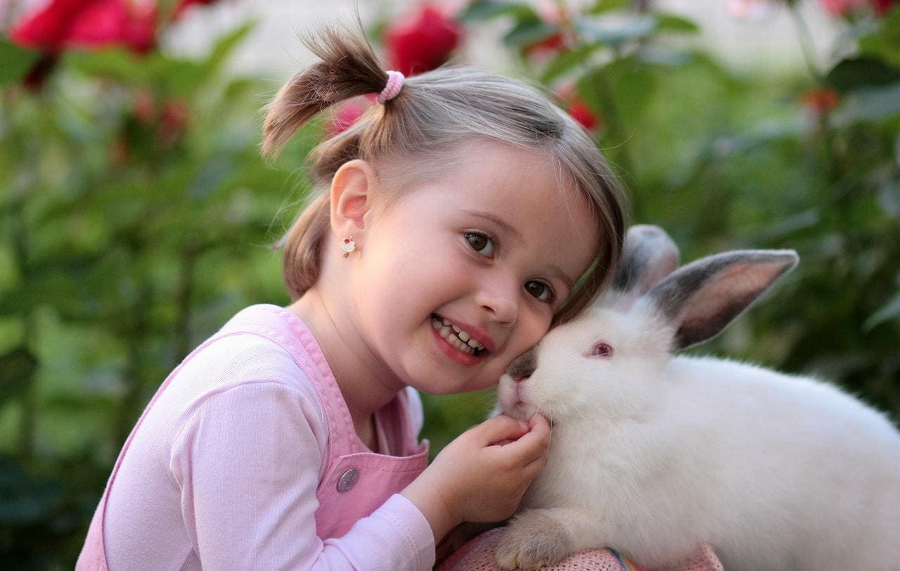 a girl playing with a rabbit outdoors