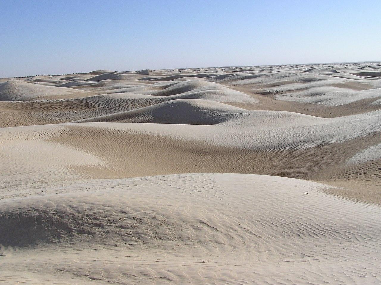 Sahara Desert by Mulleflupp Wikimedia Commons