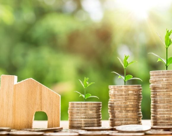 Some Simple Investments You Can Make For The Nature