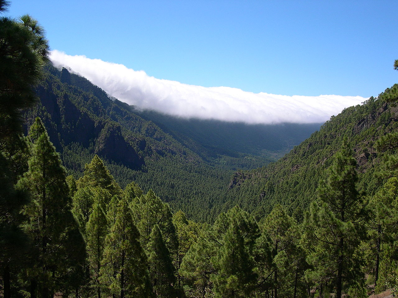 La Palma by Luc Viatour Wikimedia Commons