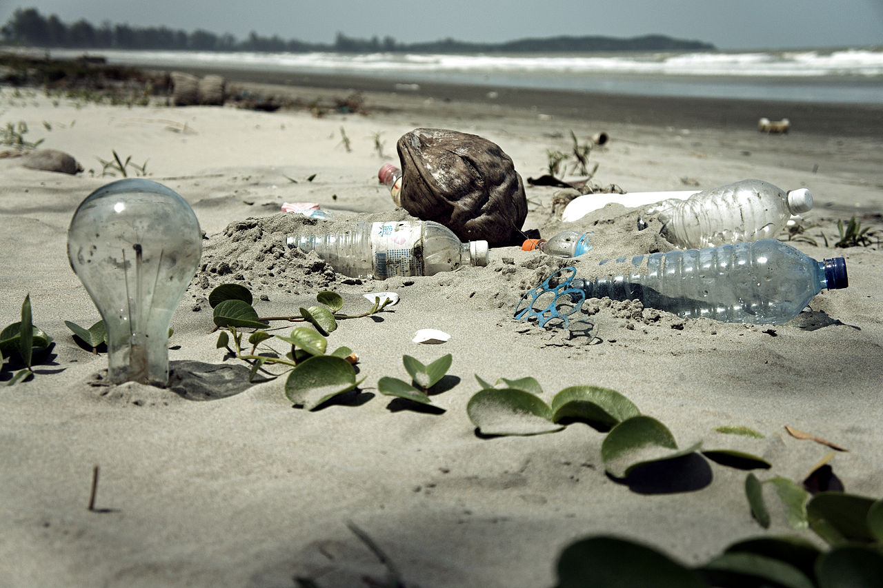 Plastic polluted beach by epSos.de wikimedia commons