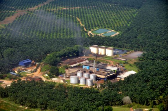 palm oil mill by marufish