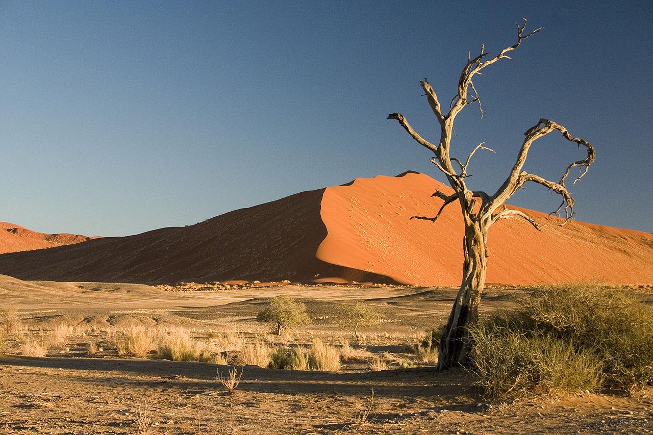 Namibia desert by Luca Galuzzi Wikimedia Commons