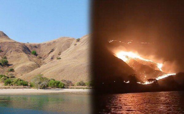 Gili Lawa before and after (Paquita Genuschka)