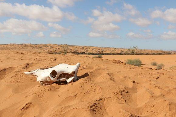 Landscape Arabic Travel Desert Africa Sahara