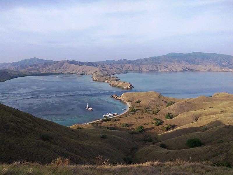 Pulau_Gili_Lawa,_Flores,_NTT_(Wikimedia Commons)