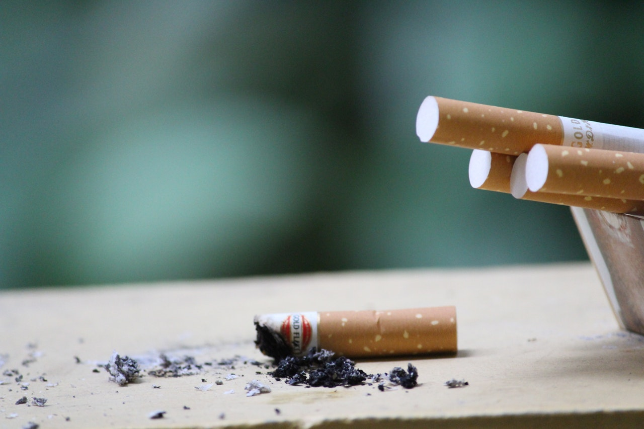 cigarette butts or filter also contain plastic