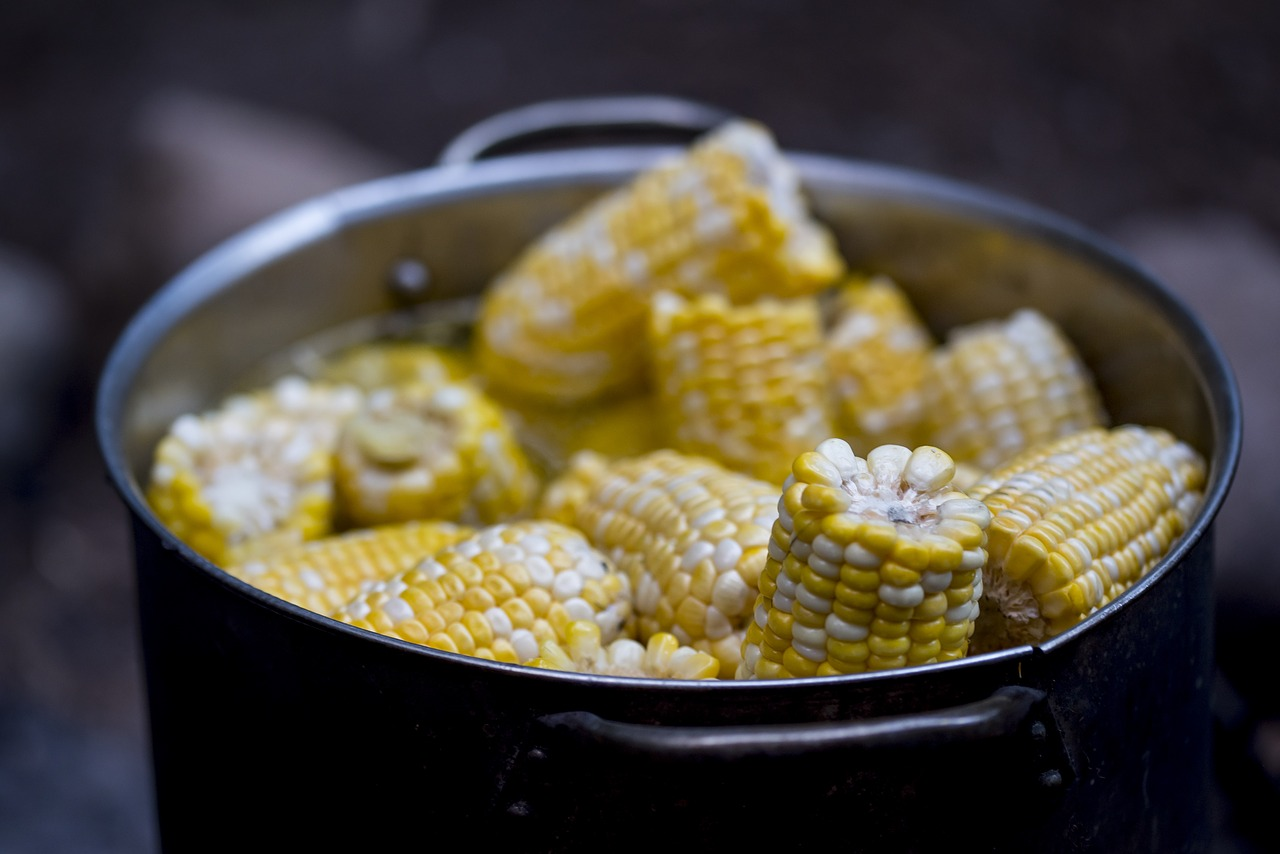 water from boiled corn shouldn't be thrown away