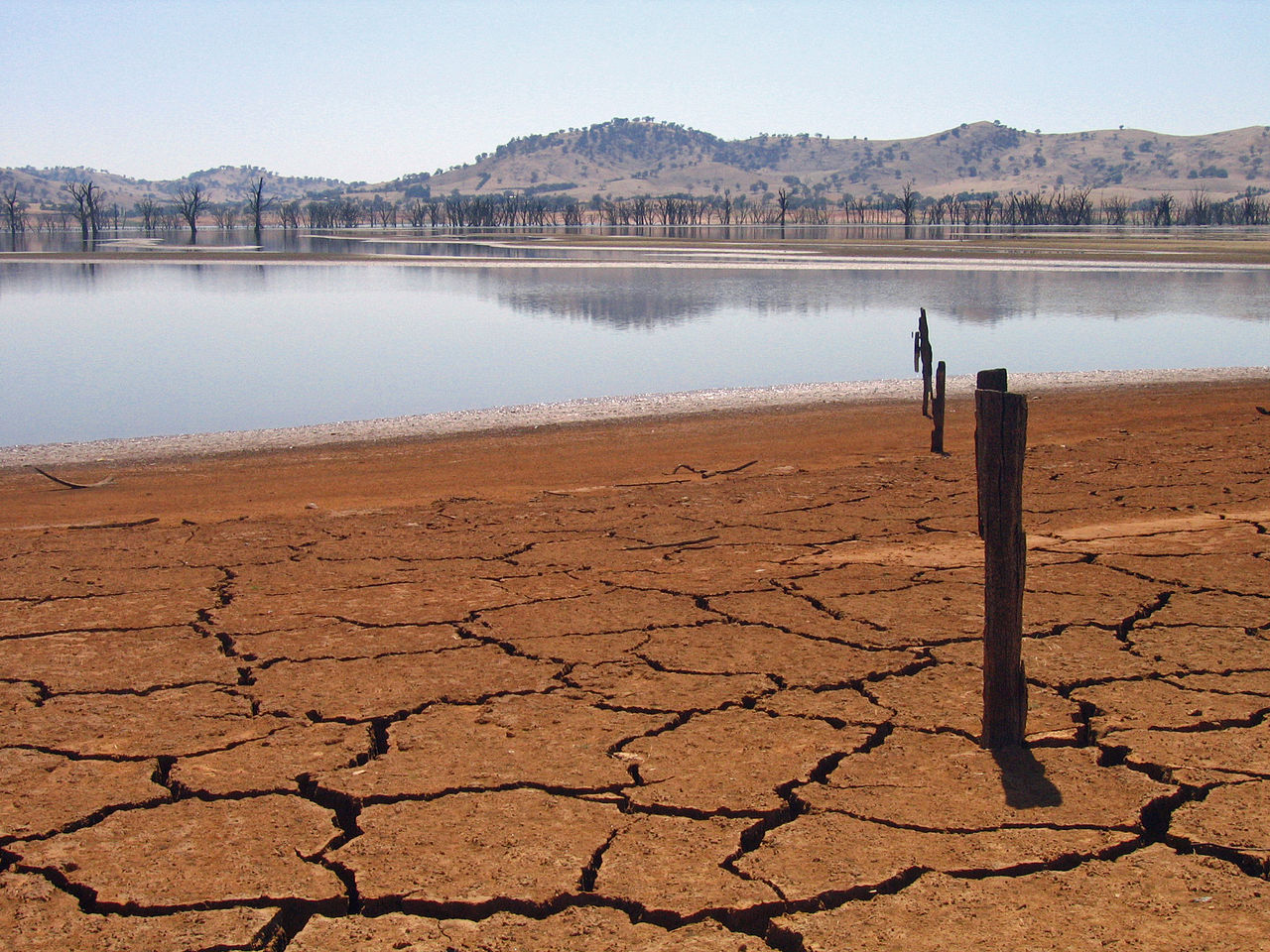 drought in Lake Hume Australia by suburbanbloke Wikimedia Commons