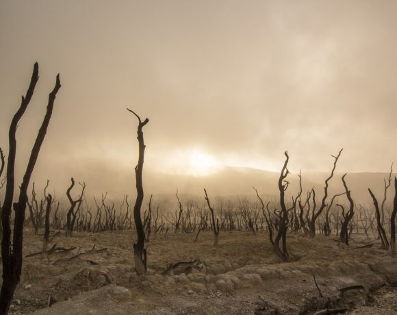 What You Need to Know About Australia's Recent Drought