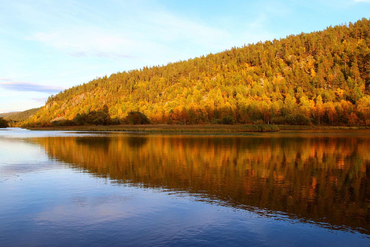Lemmenjoki in Autumn by Ilona Simomaa Wikimedia Commons