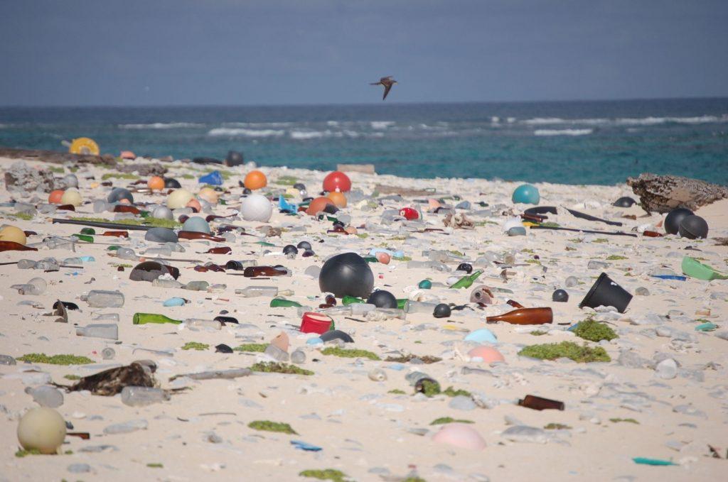 Dirty Beach (Wikimedia Commons)