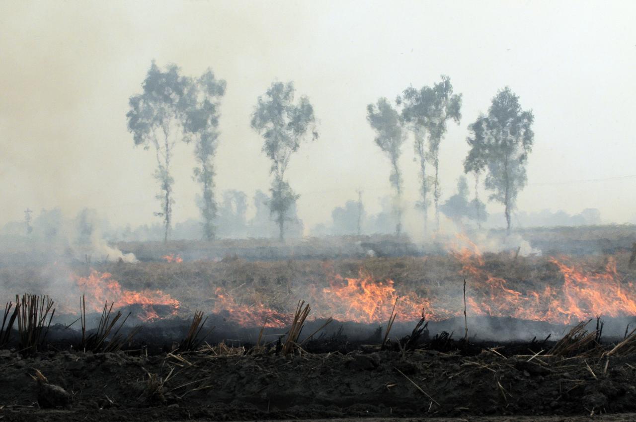 heavy smoke by CIAT Wikimedia commons