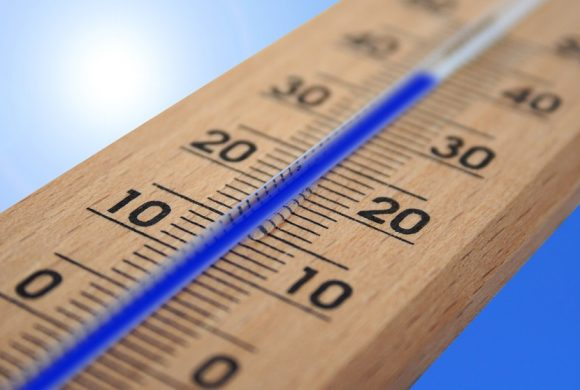 Researchers Predicted This Year Is Going To Be Scorching