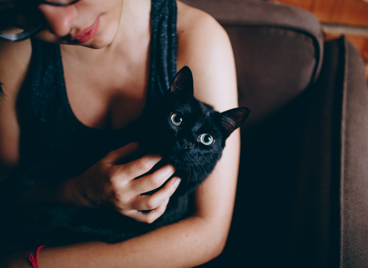 cuddling with pets on bed can reduce anxiety