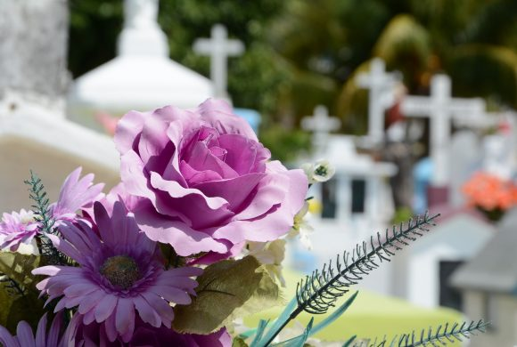Here's How You Can Continue Taking Care Of The Environment After You Die