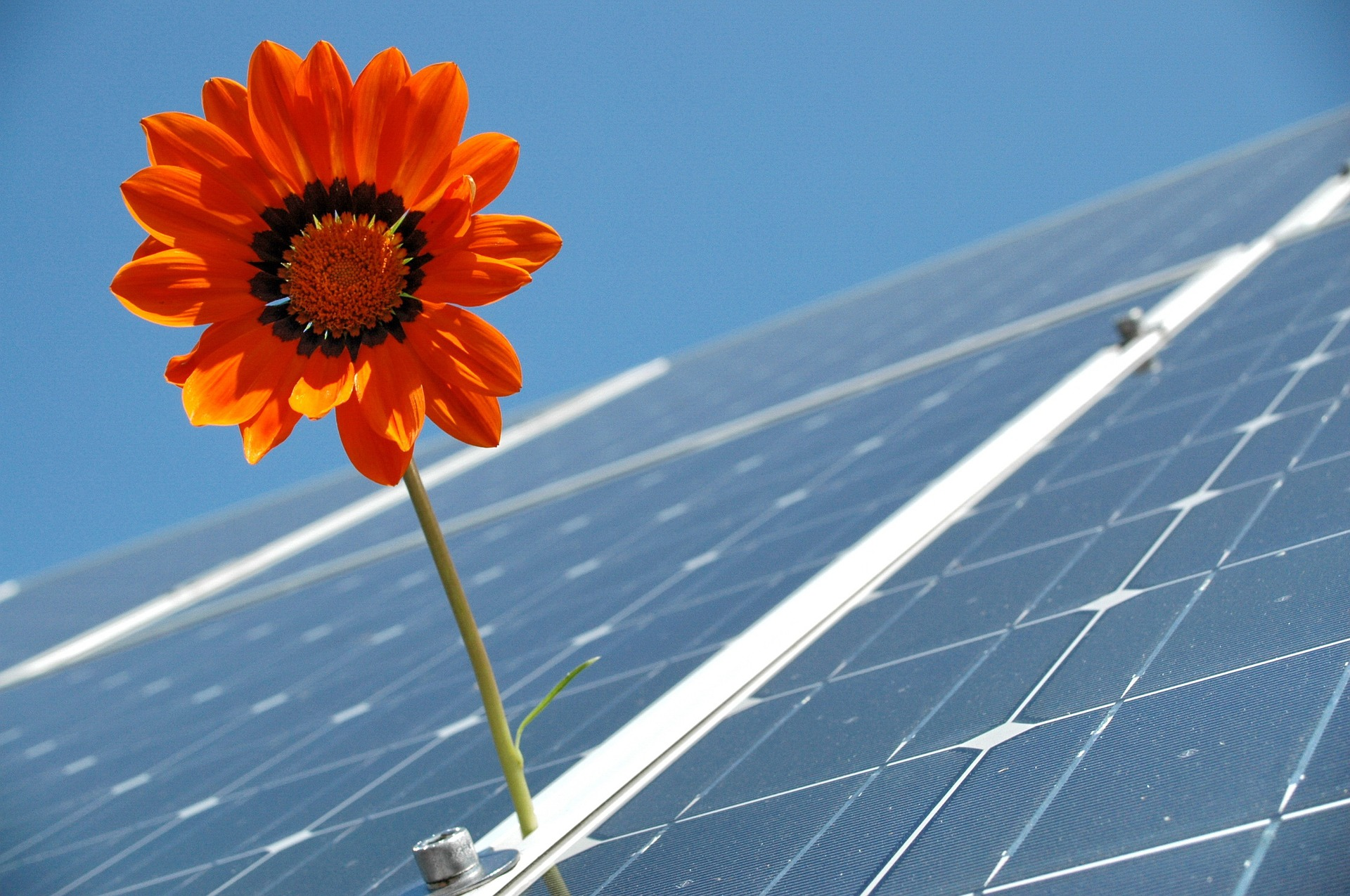 solar power is one of many ways to be green