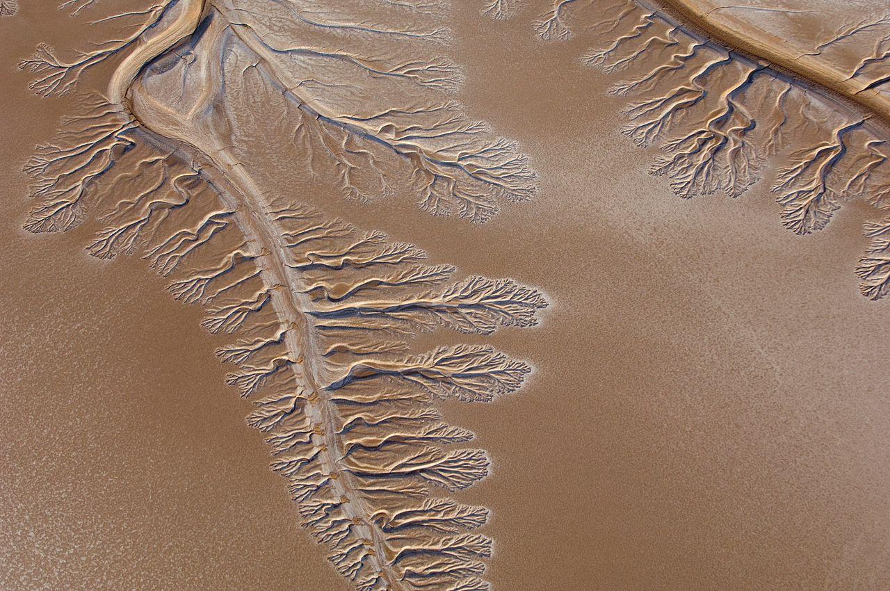 Colorado River dry delta